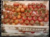 supreme_to