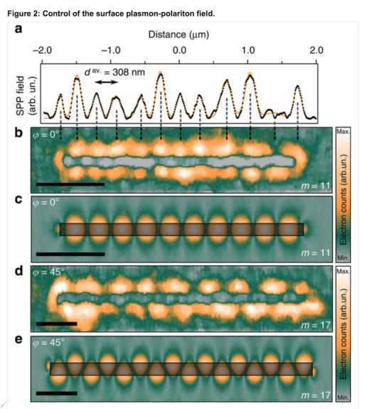 plasmon-polariton