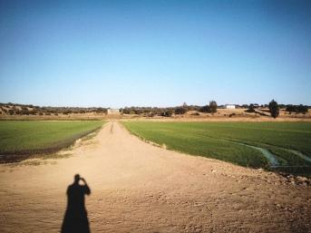 Camino-klar // Clear path